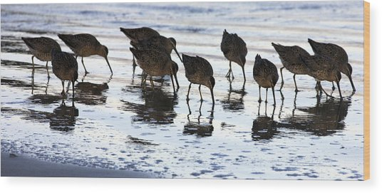 Sand Pipers Reflected Wood Print