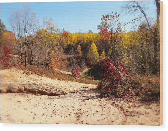 Sand Pit Wood Print by Scott Hovind
