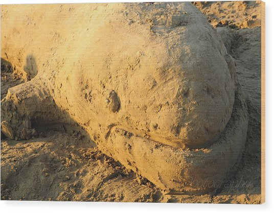 Sand Sculpture Wood Print by BandC  Photography