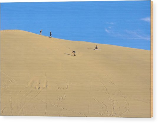 Sand Surfing In The Dunes Near Huacachina, Peru Wood Print by Markus Daniel