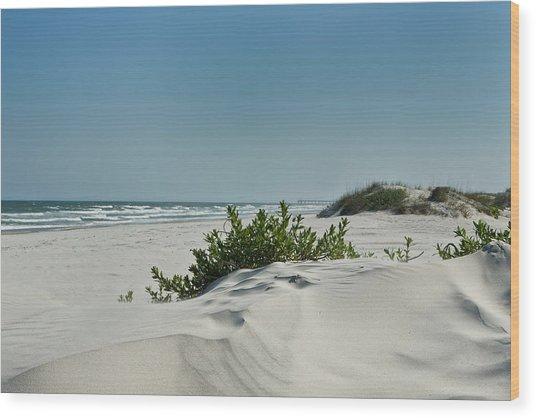 Sand Veggie Wood Print