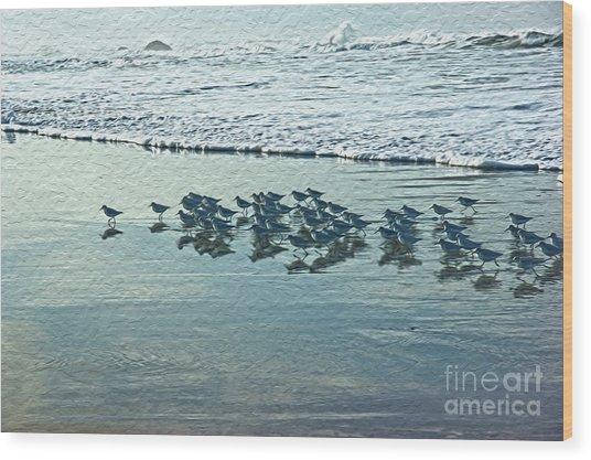 Sanderlings Wood Print by Nur Roy