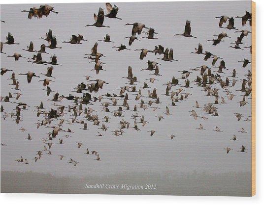 Sandhill Crane Migration Wood Print