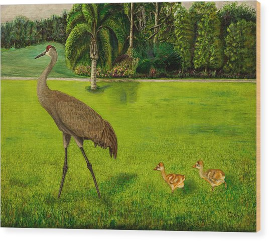 Painted Sandhill Crane With Chicks  Wood Print
