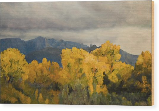 Sandias From The Bosque Wood Print by Jack Atkins