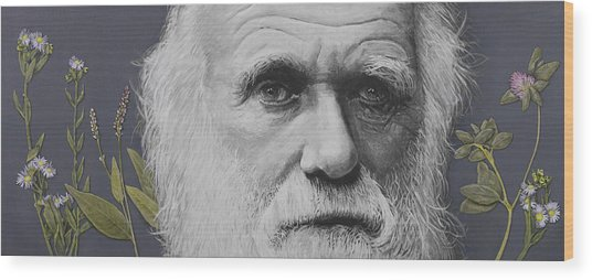 Sandwalk Wood- Charles Darwin.  Wood Print