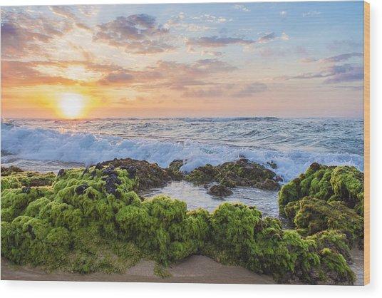 Sandy Beach Sunrise 2 Wood Print