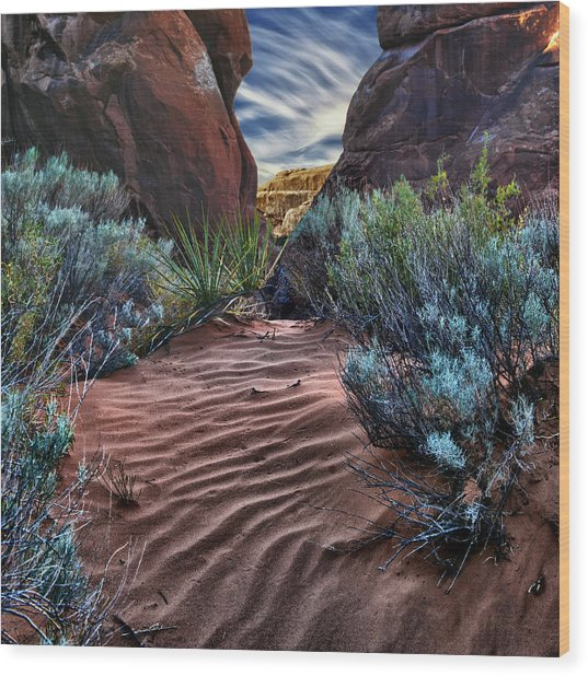 Sandy Trail Arches National Park Wood Print