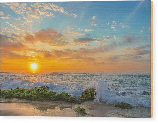 Sandy Beach Sunrise 3 Wood Print