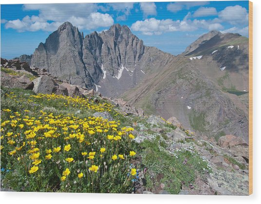 Sangre De Cristos Crestone Peak And Wildflowers Wood Print