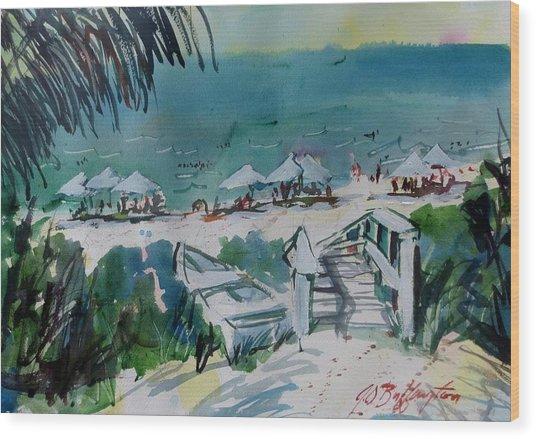 Sanibel Beach  Wood Print