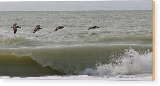 Sanibel Pelicans Wood Print