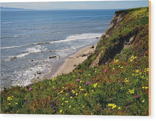 Santa Barbara Beach Beauty Wood Print