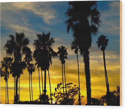 Santa Barbara Sunset Wood Print