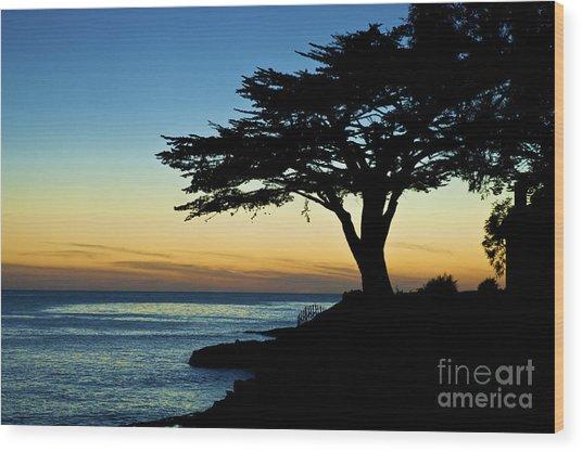 Santa Cruz California 3 Wood Print