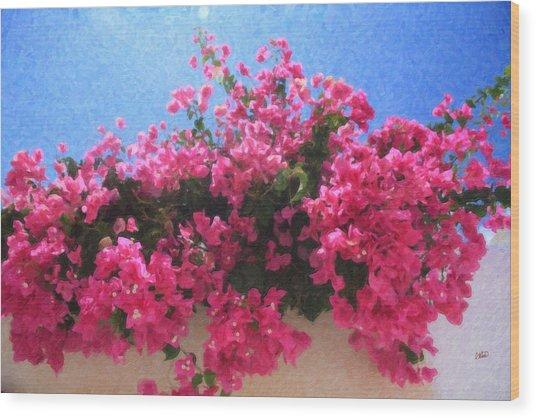 Santorini Flowers Grk1113 Wood Print