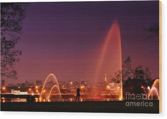 Sao Paulo - Ibirapuera Park At Dusk - Contemplation Wood Print
