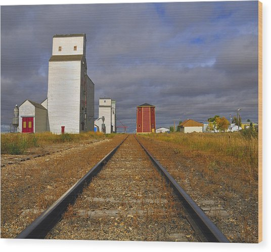 Saskatchewan Prairies Wood Print