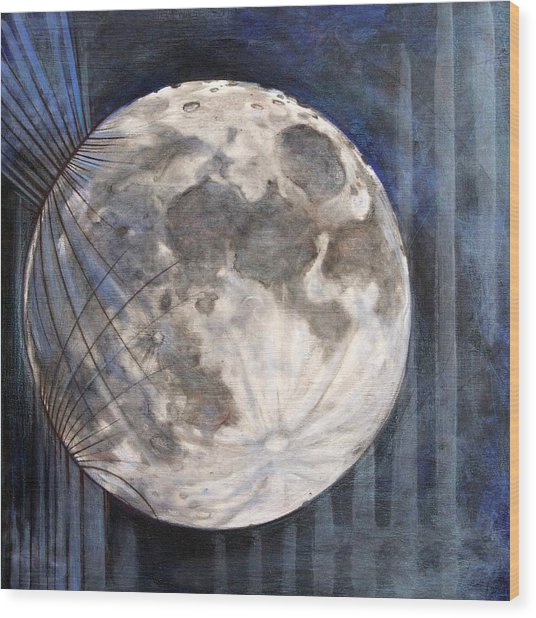 Satellite  Wood Print by Stacey Sherman