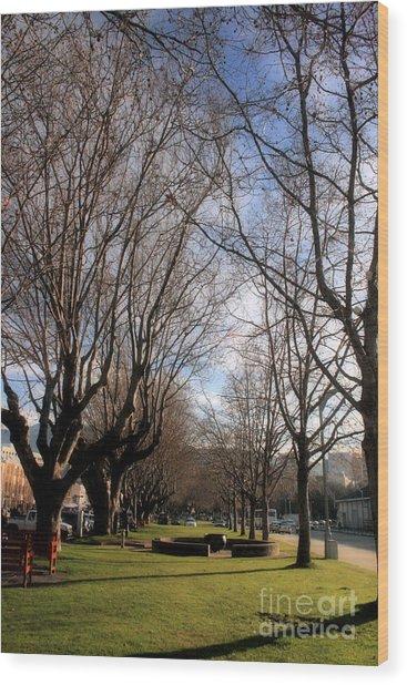 Saturday In The Park Wood Print