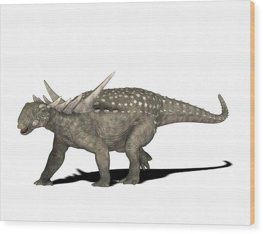 Sauropelta Dinosaur Wood Print by Friedrich Saurer