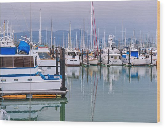 Sausalito Harbor California Wood Print