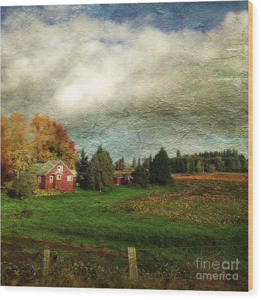 Sauvie Island Farm Wood Print