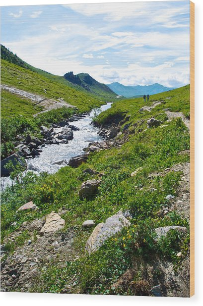 Savage River From Savage River Trail In Denali Np-ak    Wood Print