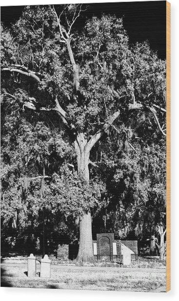 Savannah Graves Wood Print by John Rizzuto