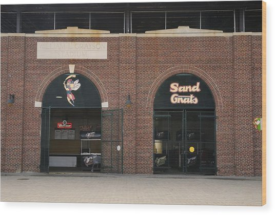 Savannah Sand Gnats At Grayson Stadium Wood Print