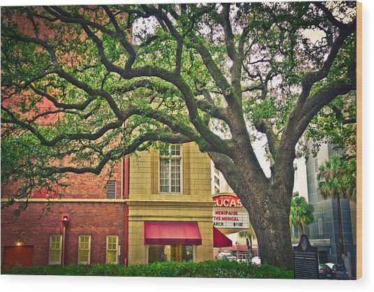 Savannah Square Wood Print