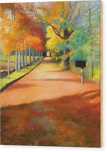 Sawmill Road Autumn Vermont Landscape Wood Print