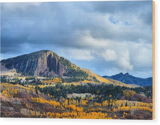Sawtooth Aspens Wood Print
