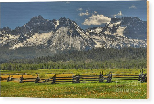 Sawtooth Mountains Wood Print