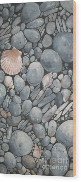 Scallop Shell And Black Stones Wood Print
