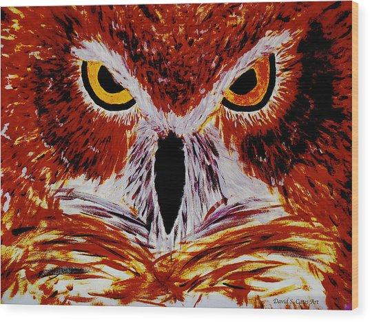 Scarlet Owl Wood Print by David Cates