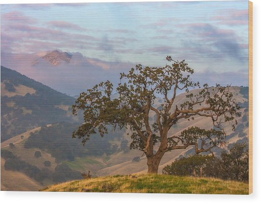 Scattered Clouds At Sunrise Wood Print