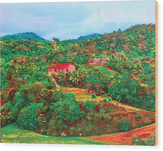 Wood Print featuring the painting Scene From Mahogony Bay Honduras by Deborah Boyd