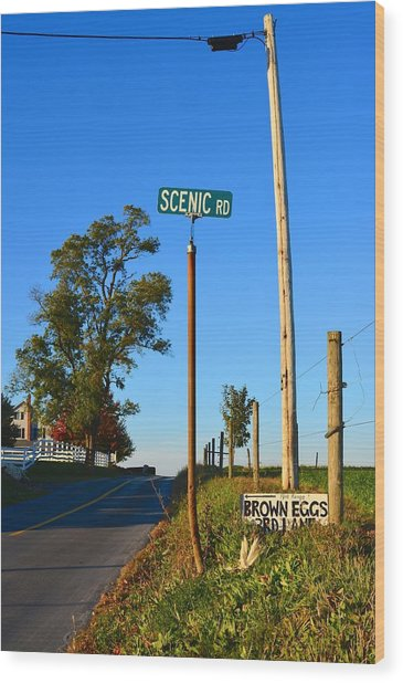 Scenic Road With Brown Eggs 3rd Lane Wood Print