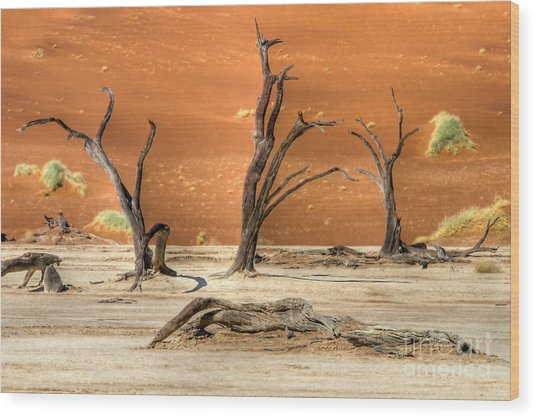 Scenic View At Sossusvlei Wood Print
