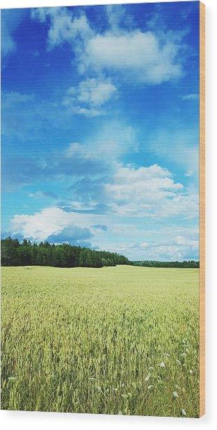 Scenic View Of Field Against Cloudy Sky Wood Print by Jonas Rask / EyeEm