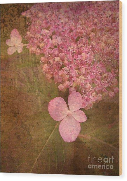 Scent Of Hydrangea Wood Print