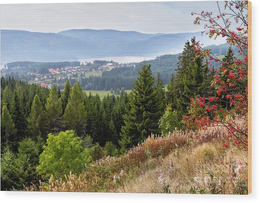 Schluchsee In The Black Forest Wood Print