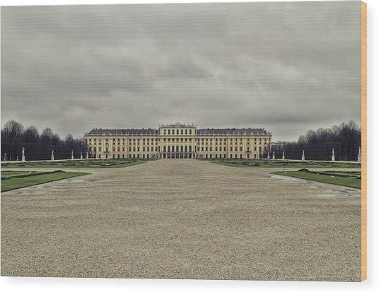 Schonbrunn Palace Wood Print
