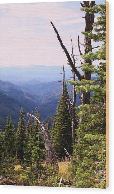 Schweitzer Mountain 1 Wood Print