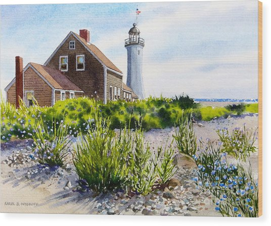 Scituate Light By Day Wood Print
