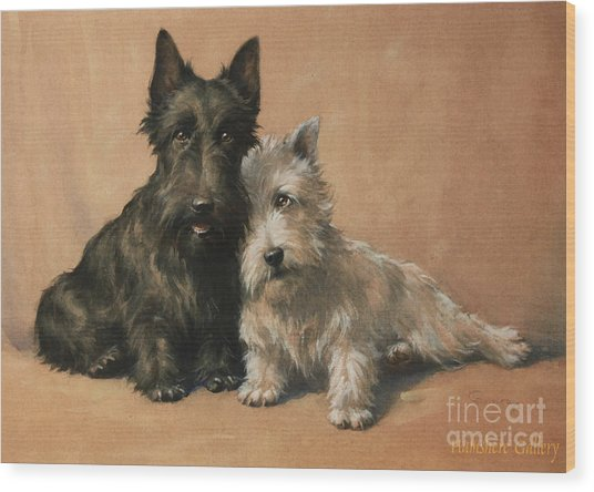 Scottish Terrier Wood Print