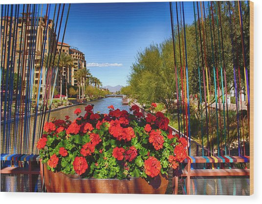 Scottsdale Waterfront Wood Print