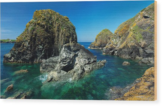 Scovarn Rock At Mullion Wood Print