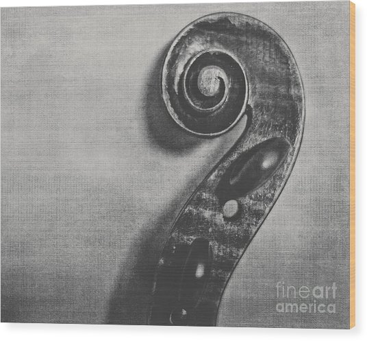 Scroll In Black And White Wood Print